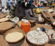 Foodstuffs are displayed for sale in a market in Kakuri district in Nigeria's northern city of Kaduna, November 12, 2012.